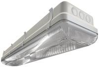 Промышленный светильник TL-ЭКО 236/30 ST IP-65