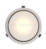 Офисный светильник ДВО 22ВТ IP65